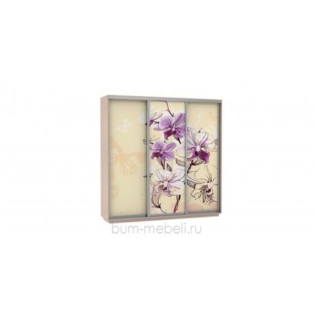 Шкаф-купе трехдверный 240 см (дуб молочный/орхидея)