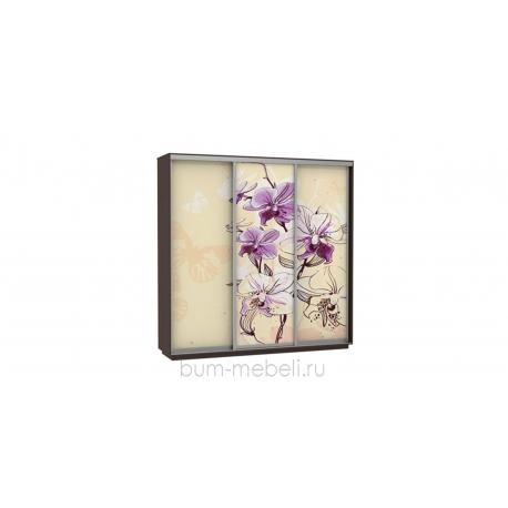 Шкаф-купе трехдверный 240 см (венге/орхидея)