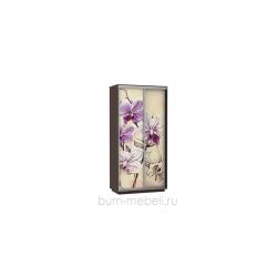 Шкаф-купе двухдверный 120 см (венге/орхидея)