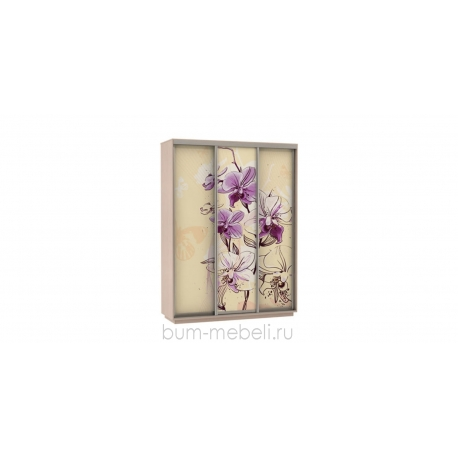 Шкаф-купе трехдверный 180 см (дуб молочный/орхидея)