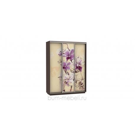 Шкаф-купе трехдверный 180 см (венге/орхидея)